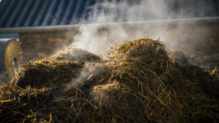 Biogas from straw as a sustainable alternative to modern biogas production
